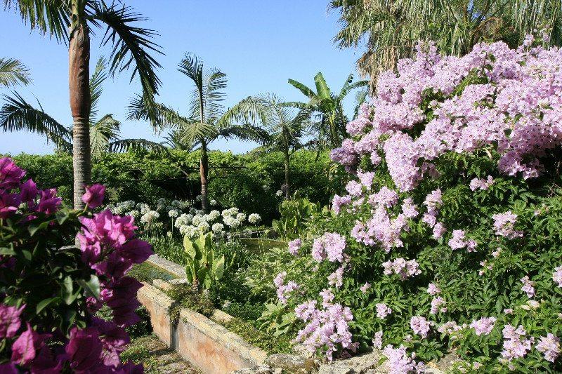 springtime in Sicily